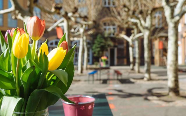 Der Hof der Alten Feuerwache im Frühling, Foto: Rolf Wessel